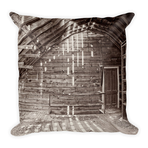 Inside the Past Throw Pillow