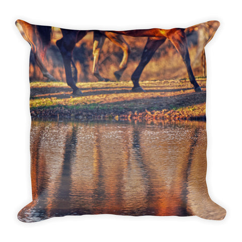 Running Reflection Throw Pillow