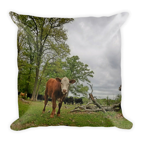 Independent Throw Pillow