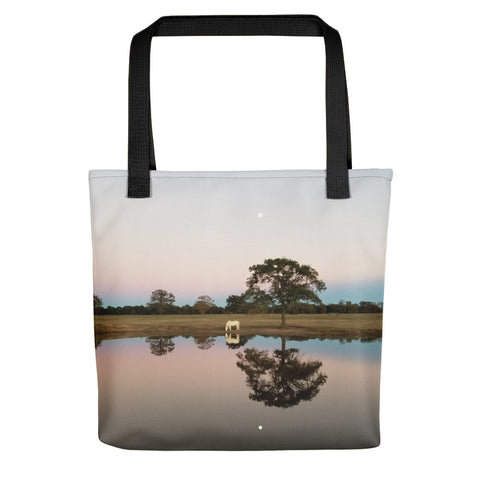 Texas at Dusk Tote bag