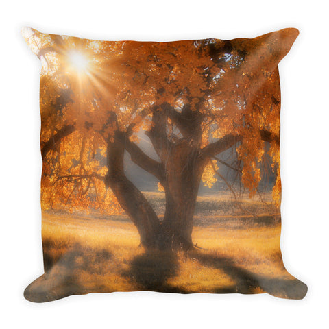 Boxelders Autumn Tree Throw Pillow