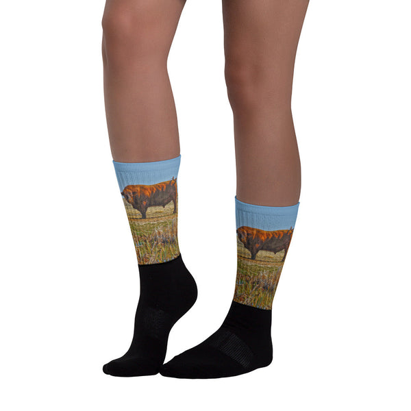 Pigtail Bull - Black foot socks