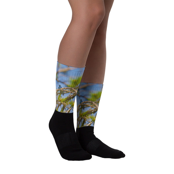 Mountin Bluebird - Black foot socks