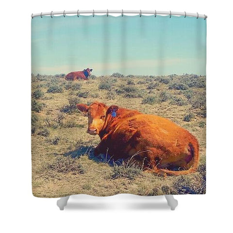 Naptime in April Shower Curtain