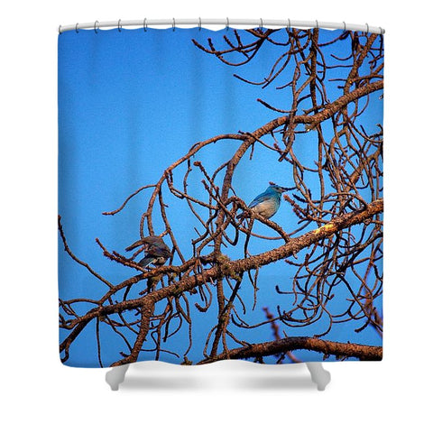 No Peeking While Bathing Shower Curtain