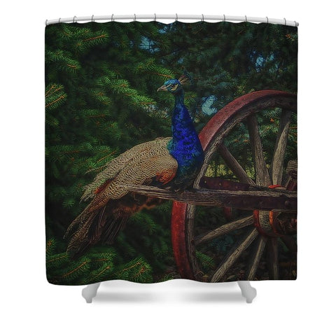 Peacock Vantage Shower Curtain