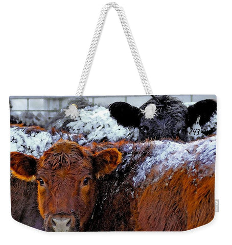 Peek a Boo Heifers Weekender Tote bag