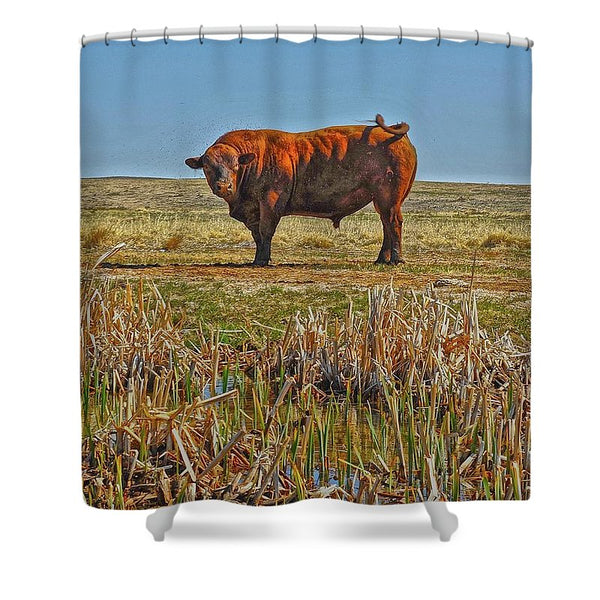 Pigtail Bull - Shower Curtain