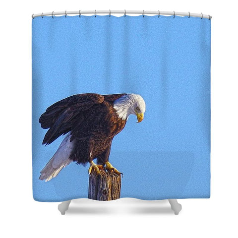 Preparing for Patriotic Flight Eagle Shower Curtain