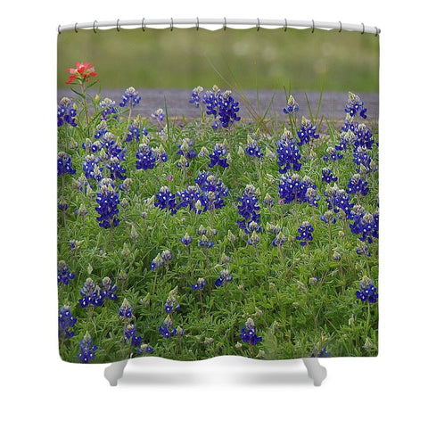 Red Paint Over Blue Bonnets Shower Curtain