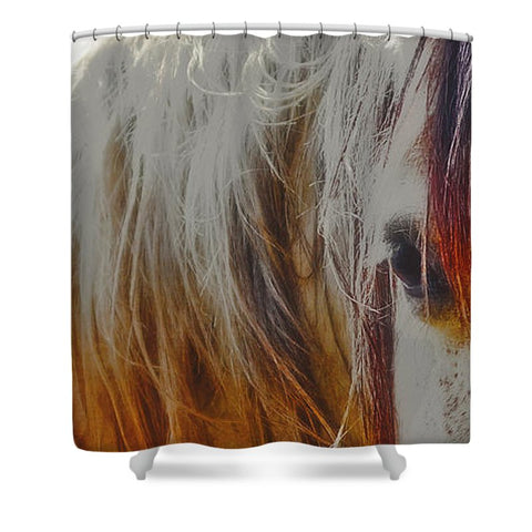 Retro Sunlight and Grey Shower Curtain