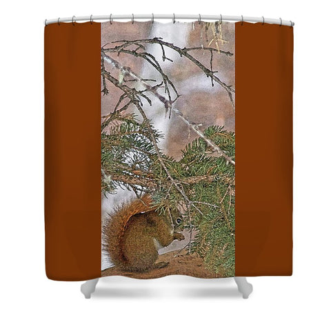 Squirrel, Pine Tree and a Nut Shower Curtain