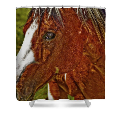 Summer Mare Shower Curtain