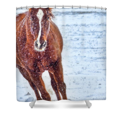 Sundancing in the Snow Shower Curtain