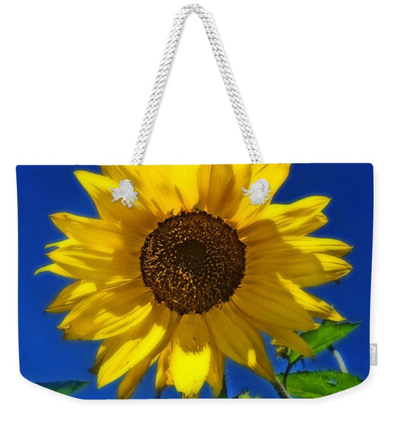 Maize 'N Blue Weekender Tote bag