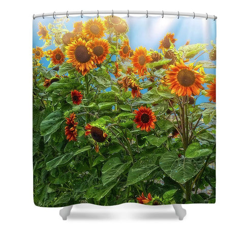 Sunflower Pack Shower Curtain