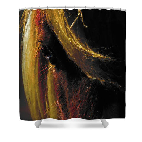 Sunset on the Wild Shower Curtain