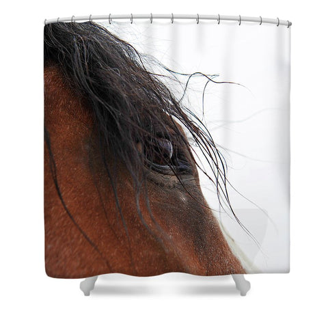 Whip's Eye Shower Curtain