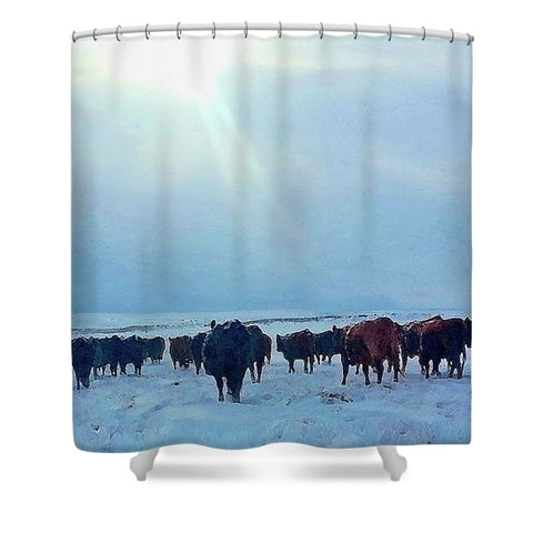 Wyoming Winter Push Shower Curtain