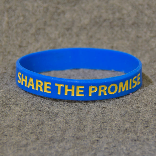 Share the Promise Wristband