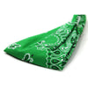 Kelly Green Head Wrap Headband