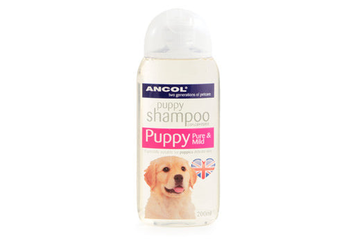 Ancol Puppy Dog Shampoo