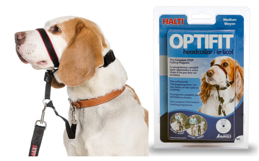 Halti Optifit Reflective Headcollars