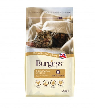 Burgess Cat - Chicken