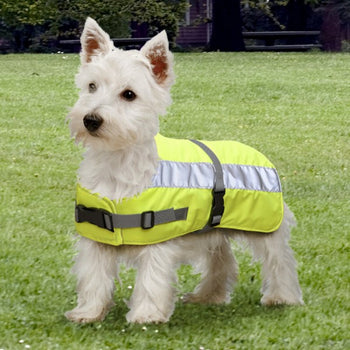 PetLife Flectalon Hi-Viz Dog Jackets