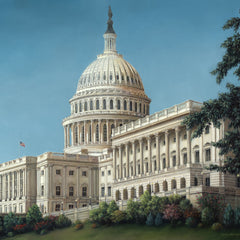 Gulay Berryman Title: The Capitol, Washington, D.C.