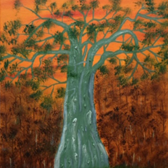 Babs Mohammed Title: Baobab Tree