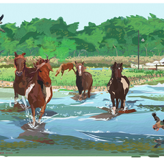 Sam LaFever Title: Chincoteague Ponies 2