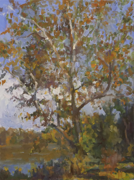 Curney Nuffer Title: Autumn on The James