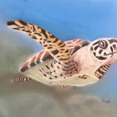 Edwards, Larry Title: Sea Turtle