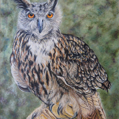 "Gloria J. Callahan Title: ""On Glove"" - Eurasian Eagle Owl"