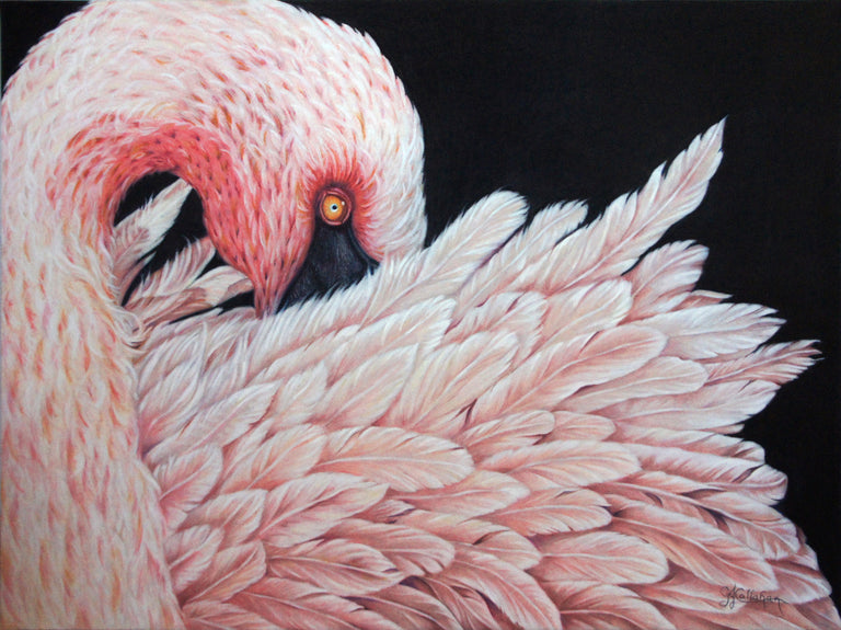 Gloria J. Callahan Title: Pretty In Pink - Flamingo