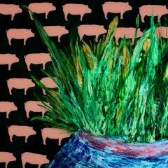 Alice Husak Title: Plant-Based Porkies