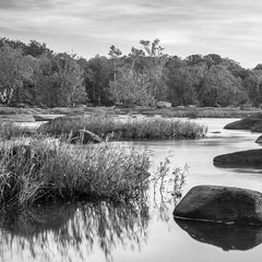 David Everette Title: James River Waterscape