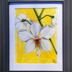 Kathy Deavult Mullholand Title: White Orchid
