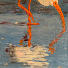 Wetzel, Mary Lee Title: Ibis 1