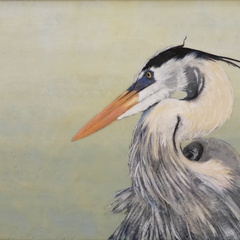 Martha Kroupa Title: Great Blue Heron