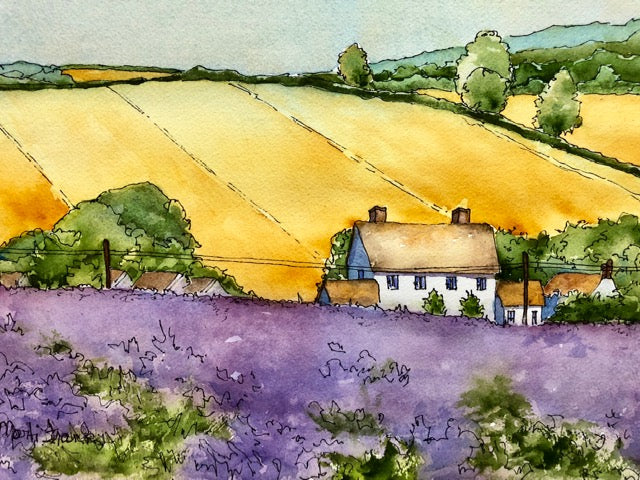 Marti Franks Title: Lavender Fields in The Cotswolds