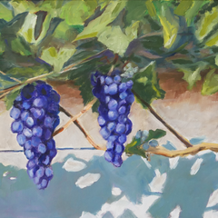 Scott Thornhill Title: Shadow Grapes