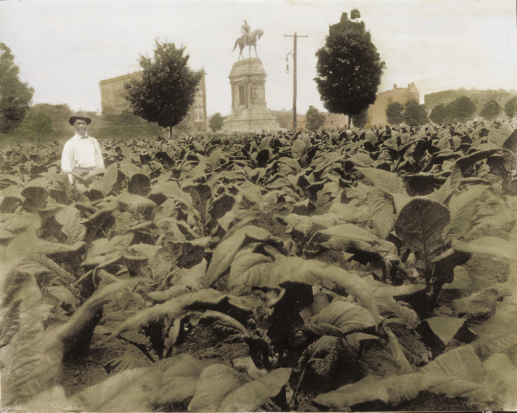 Susan Bock Title: Monument Avenue 1900