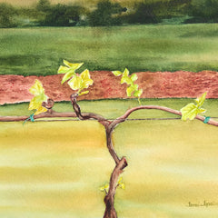 Topalu, Tami Title: New Beginnings