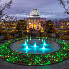 Tom Hennessy Title: Lewis Ginter Gardenfest of Light