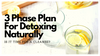 3 Phase Plan For Detoxing Naturally