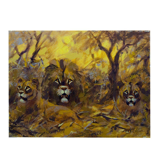 3 Lions by Mark Enslin - Manduwe.com