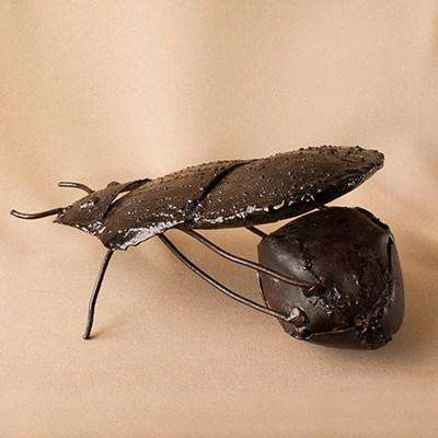Dung Beetle Varnished Metal - Africa Handmade