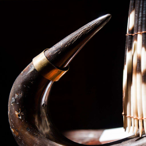Genuine Wildebeest Horn and Porcupine Quill Combo Table Lamp with Fitting on Stand - Africa Handmade